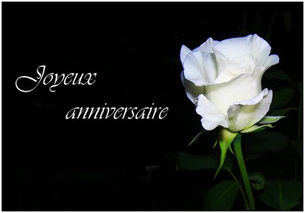Anniversaire Oo-Rose-oO Rosebl10