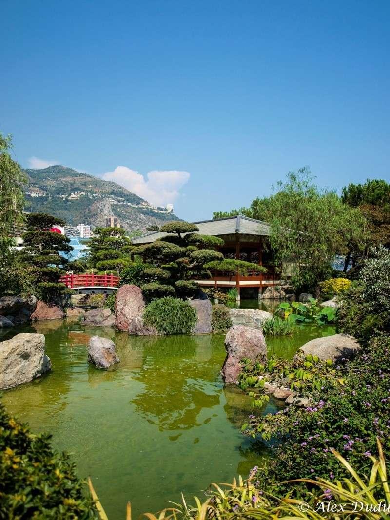 Le jardin japonais de Monaco!! P8202711
