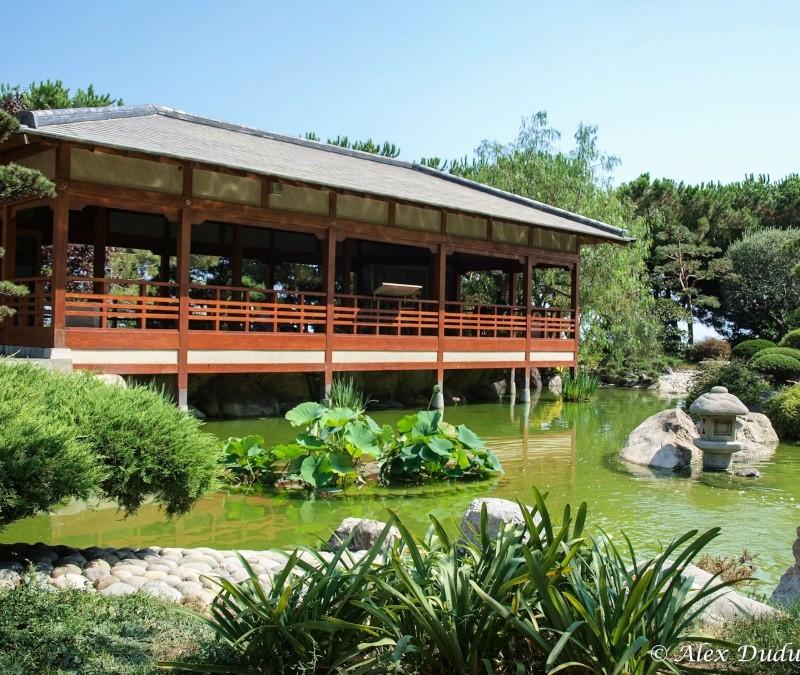 Le jardin japonais de Monaco!! P8202810