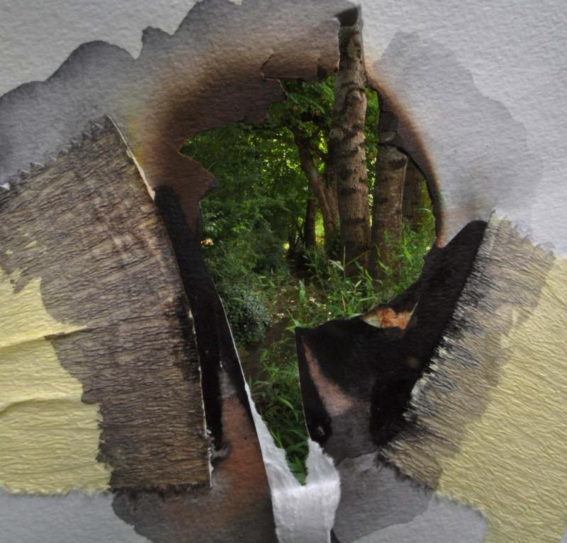 Essais non peintographiques Ruisse13