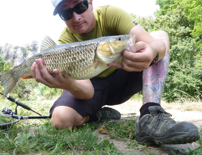 "Week end SPECIALS  ""Chub - Bass & Co"" Le 27 & 28/07 et le 3 & 4/08 P1040230"