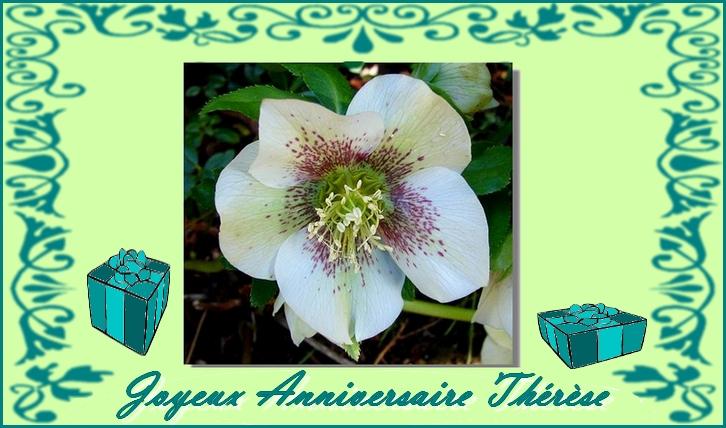 Joyeux anniversaire Thérèse 3qu8ir10