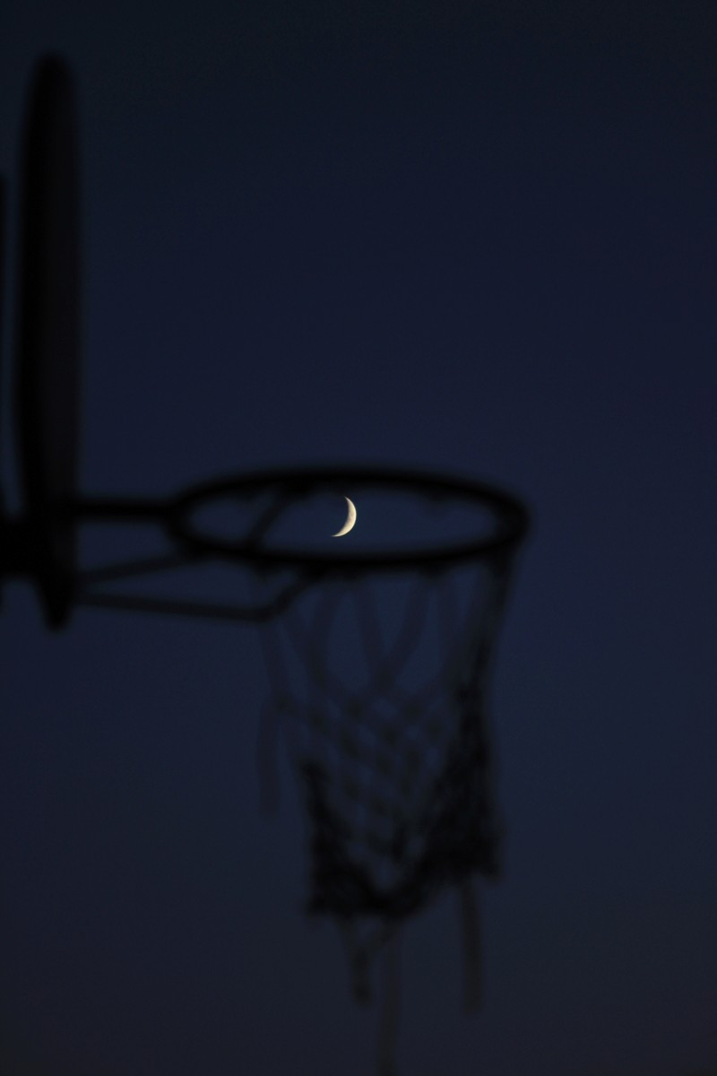 """Luna....In the basket"" Lune8011"