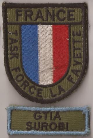 Les écussons de la Task Force La Fayette Gtia_s10