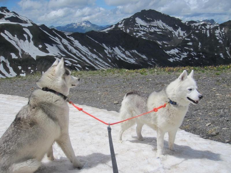 Saskia et Jiro, partie 2 - Page 30 810