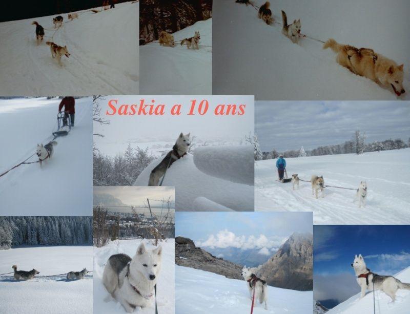 Saskia et Jiro, partie 2 - Page 30 Saskia14