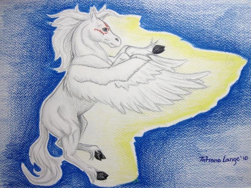 Angel of Light Img_1013