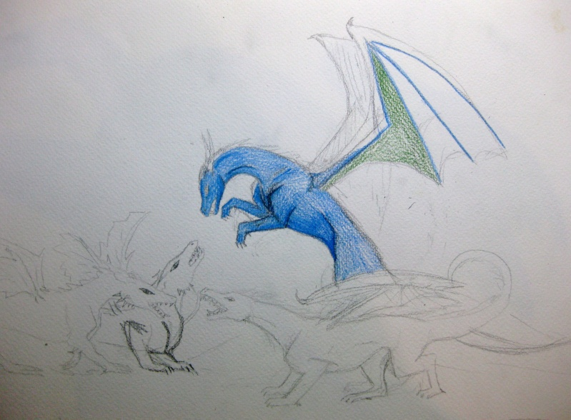 Dragon Fight Img_4611