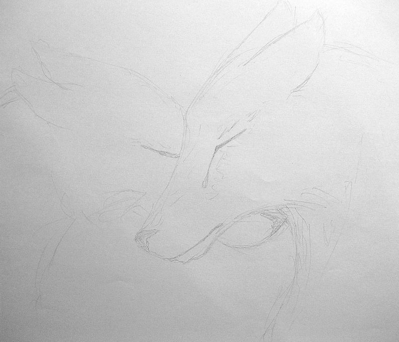 Wolfs Love Img_4715