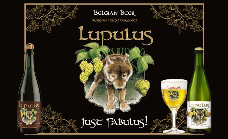 Amis de la Bière, Bonjour ! - Page 10 Brasse10