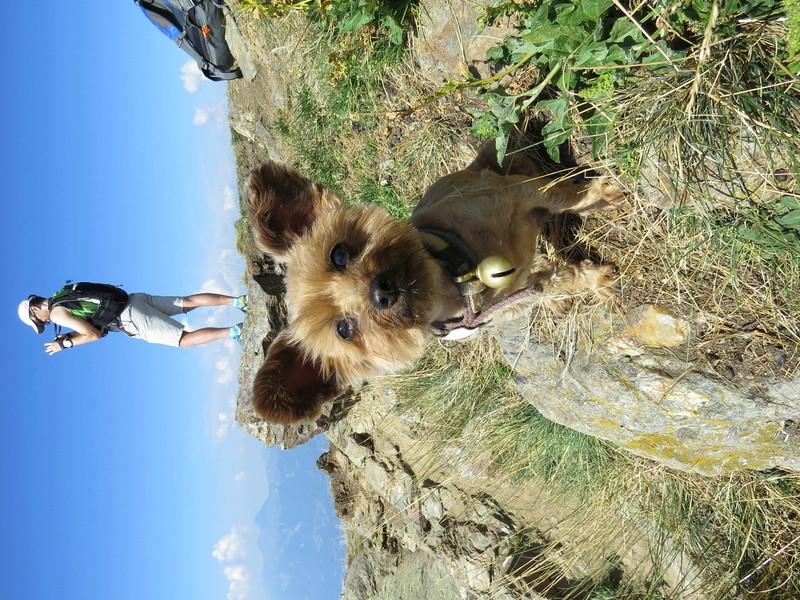 Balades canines: Pays de Gex/Jura/Genève ou Albertville (73) - Page 5 Img_2659