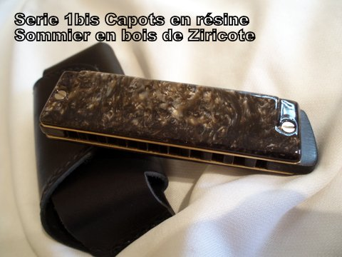 Les harmonicas BRODUR - Page 5 78713410