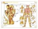 [Ottobre 2010]-TN 2010 -Appendix OCE Acquarius Camus & Aries Mu 5611
