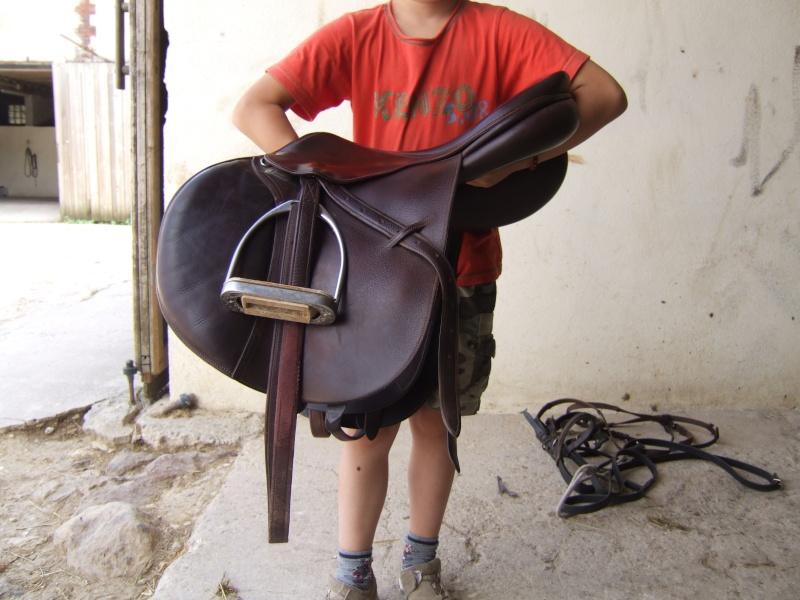 selle de cheval Dscf6411