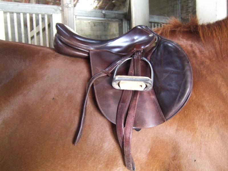 selle de cheval Dscf6413