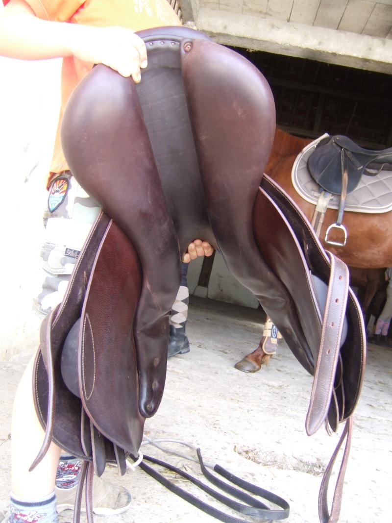 selle de cheval Dscf6417