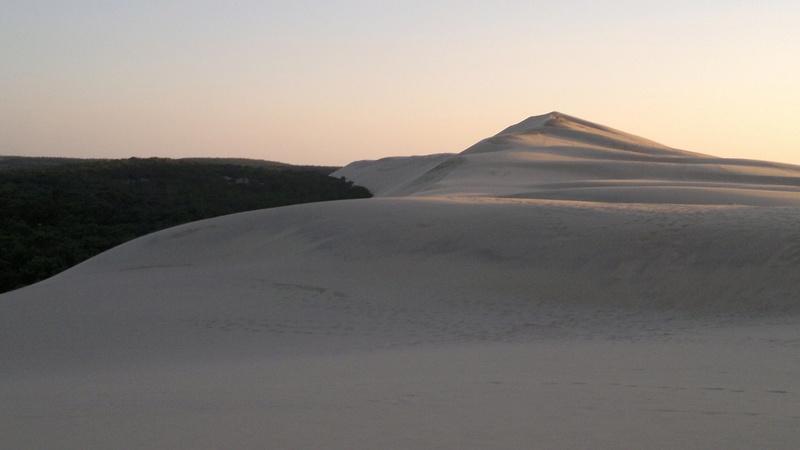 La dune du Pyla (bassin d'Arcachon) 30092010
