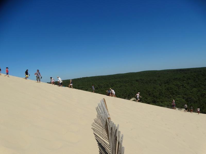 La dune du Pyla (bassin d'Arcachon) Dsc04046