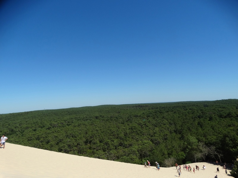 La dune du Pyla (bassin d'Arcachon) Dsc04047