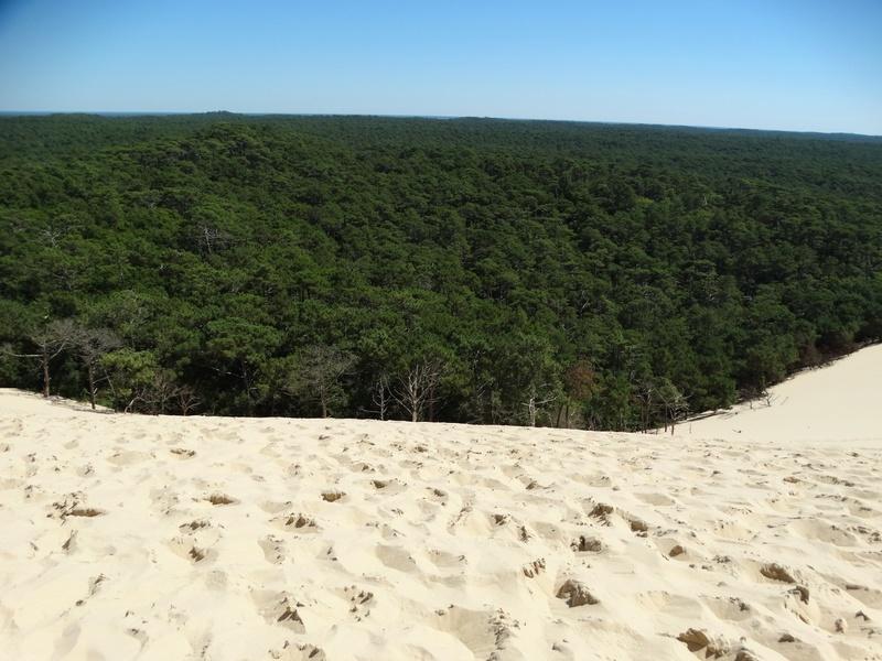 La dune du Pyla (bassin d'Arcachon) Dsc04049