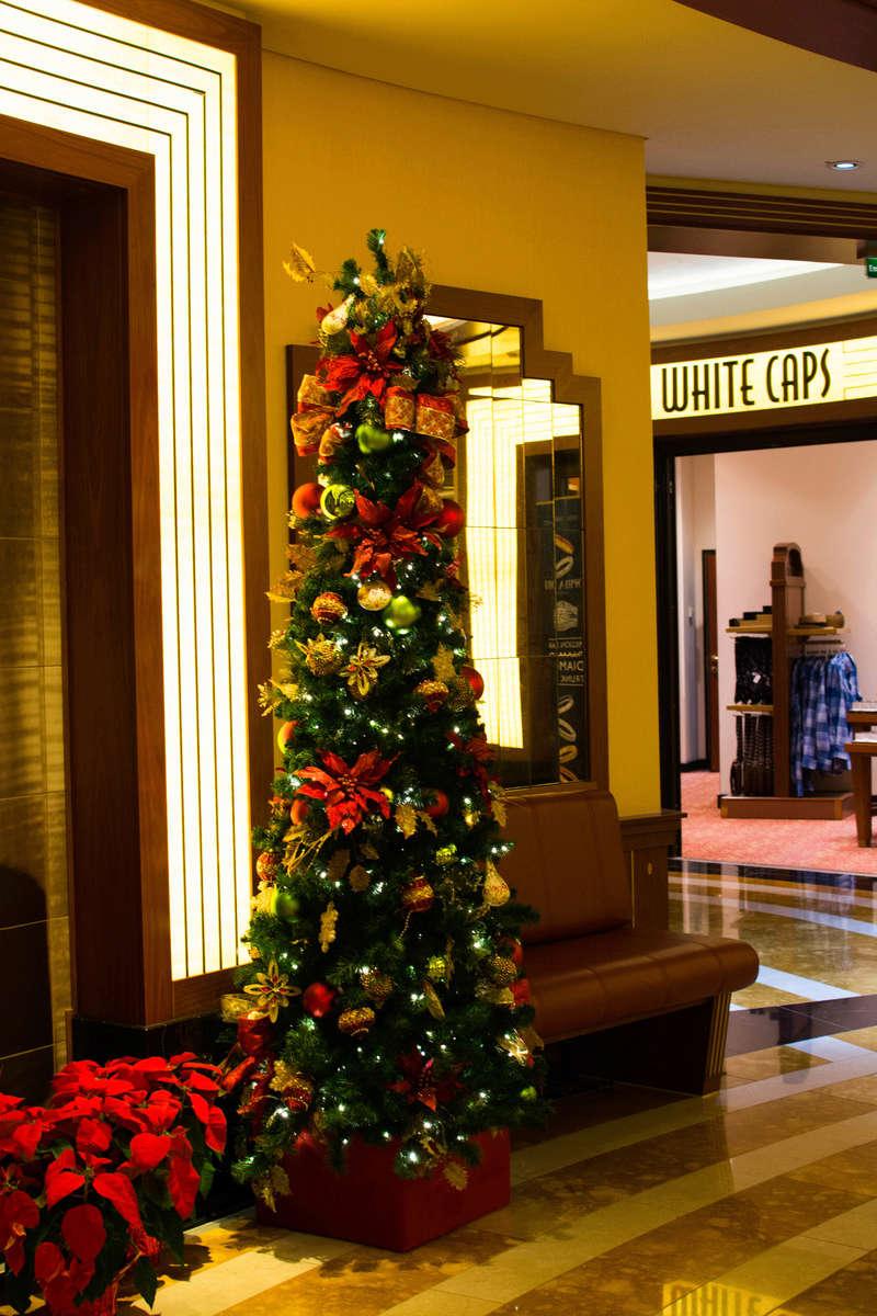 Once upon a christmas time: WDW, DCL, et Universal vu par 2 lyonnais du 01 au 20 novembre 2015 [TERMINÉ: 17/04/17] - Page 8 Dsc_7622