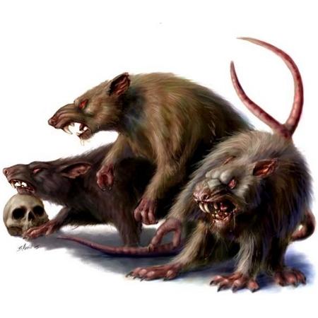 Demande d'ajout de monstres dans le bestiaire - Page 3 01_rat10