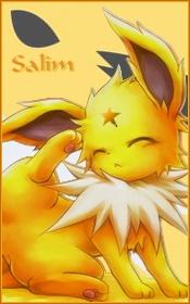 Salim [Voltali]
