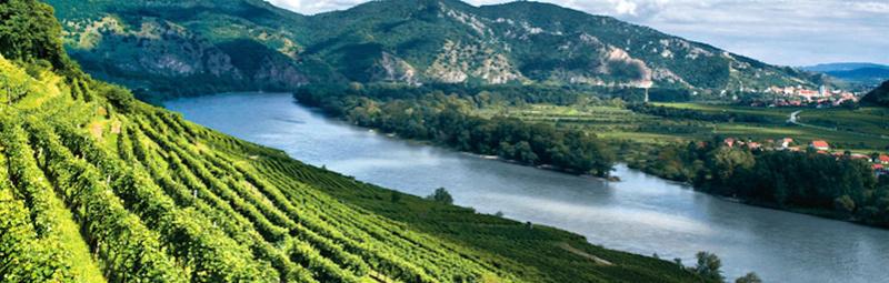 Route Du lac d'Obal - Les vin de Pirée Vignes10