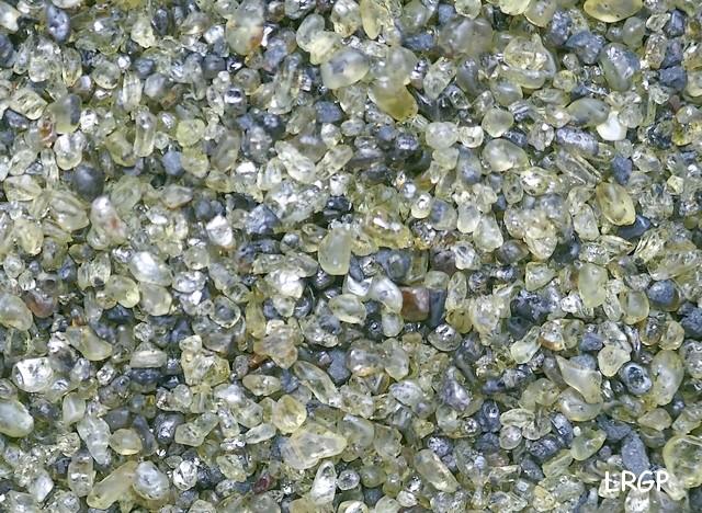 Un sable à olivine P1020010