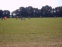 Loire Valley Trophy F5J FAI 6&7 juillet Pict0111