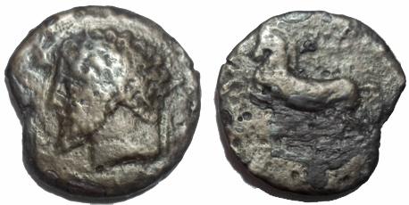 Ma collection de monnaie numide .( Massinissa Micipsa) - Page 4 Nouvel34