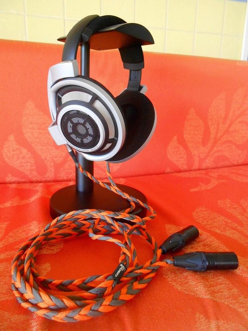 Nuovo Set Up QES LAB HPBA-2S & HD800 Dscn1712