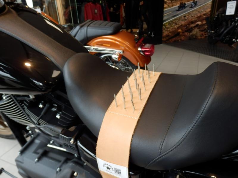 Humour en image du Forum Passion-Harley  ... - Page 2 P6140610