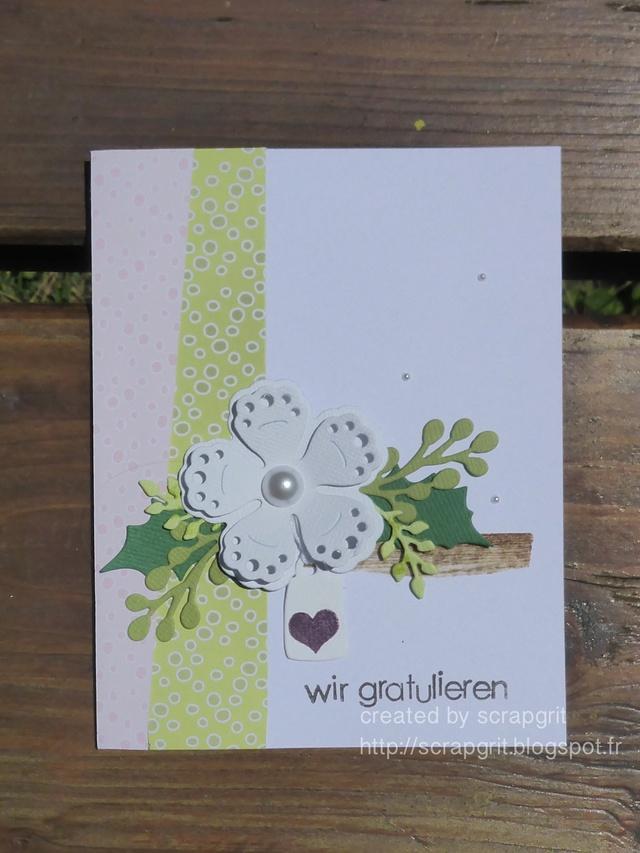 Scrapgrit und ihre Gans FIN P1050927