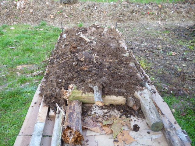 je jardine avec l'esprit de la permaculture  - Page 2 2_avec10