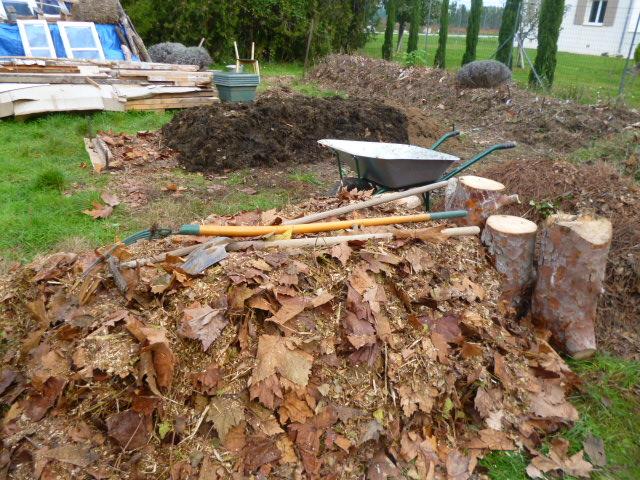 je jardine avec l'esprit de la permaculture  - Page 3 P1050115