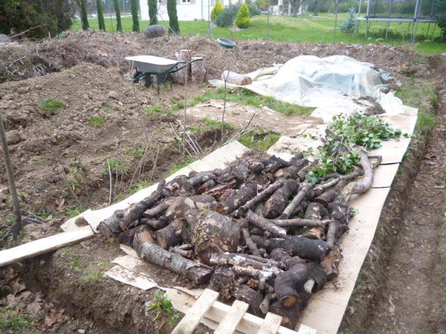 je jardine avec l'esprit de la permaculture  - Page 2 P1050513