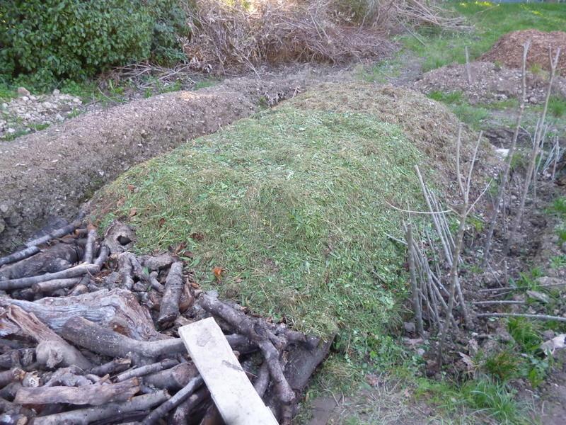 je jardine avec l'esprit de la permaculture  - Page 2 P1050710