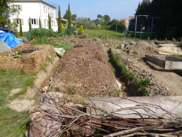je jardine avec l'esprit de la permaculture  - Page 3 P1060713
