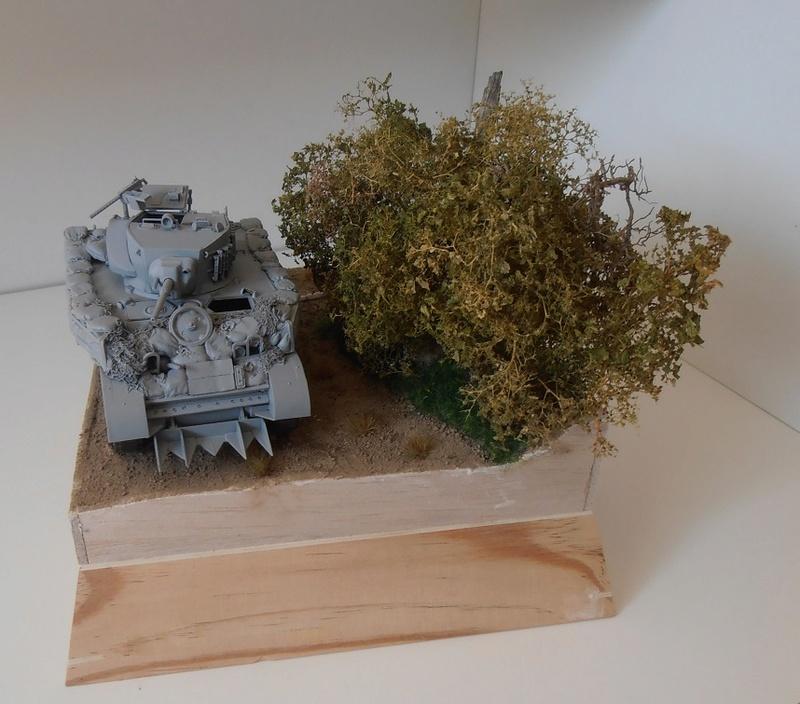 """La guerre des haies Normandie 1944 ( Tamiya, nemrod, blast model au 1/35eme ) """" montage avec ctreize """" - Page 2 P8071211"""
