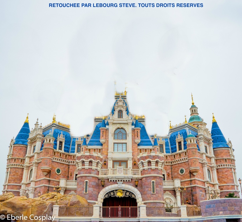 [Shanghai Disneyland] The Enchanted Storybook Castle (2016) - Page 11 Wm-02210