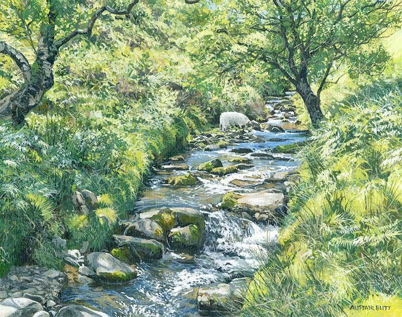 L'eau paisible des ruisseaux et petites rivières  Alista10