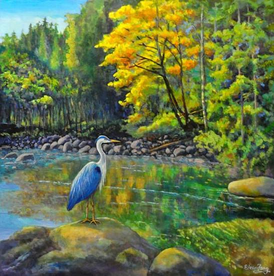 L'eau paisible des ruisseaux et petites rivières  Heron10