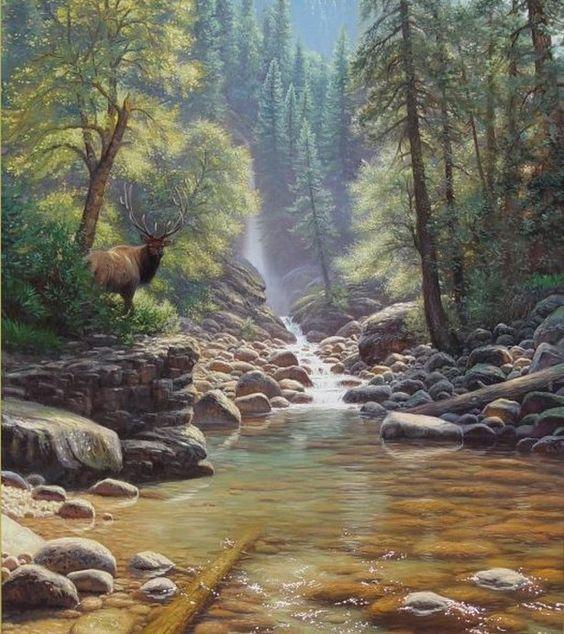L'eau paisible des ruisseaux et petites rivières  Mark_k10