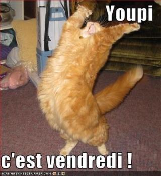 Bonjour - Page 2 Youpi-10