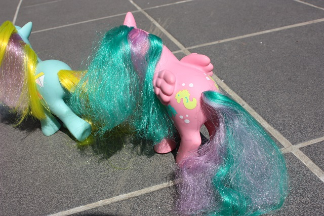 Sunshine Ponies - How Does it Work? Img_9126