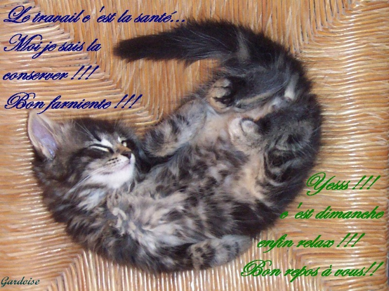 Bon Dimanche 5e4eec10
