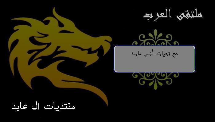 ملتقى العرب 15