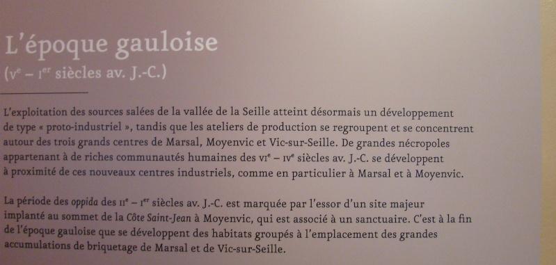 Musée du Sel à Marsal, Moselle Dsc05920