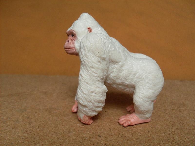 Gorilla albino Albino13